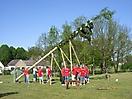Maibaum aufstellen 2009_13