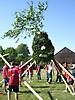 Maibaum aufstellen 2009_15