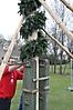 Maibaum aufstellen 2013_108