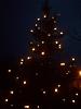 Weihnachtsbaum aufstellen 2008_22