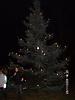Weihnachtsbaum aufstellen 2008_60