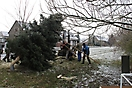 Weihnachtsbaum aufstellen 2010_10