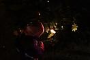 Weihnachtsbaum aufstellen 2012_42