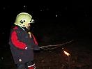 Weihnachtsbaum verbrennen 2009_41