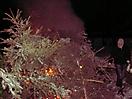Weihnachtsbaum verbrennen 2010_29