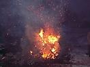 Weihnachtsbaum verbrennen 2010_35