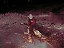 Weihnachtsbaum verbrennen 2010_55