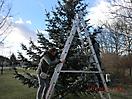 Weihnachtsbaum verbrennen 2012_2