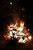 Weihnachtsbaum verbrennen 2012_36
