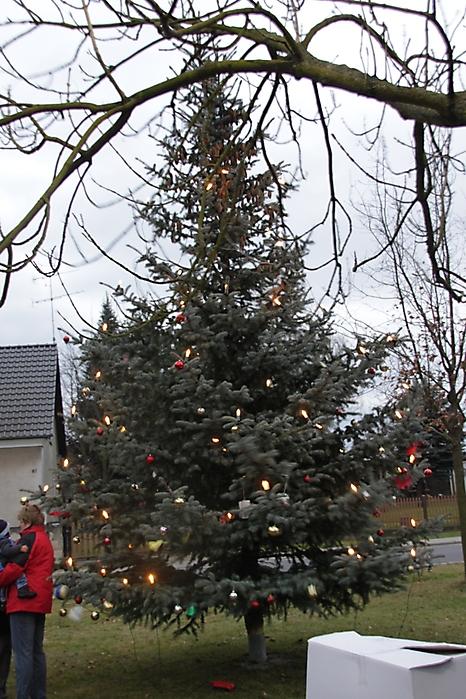 Wann Weihnachtsbaum Aufstellen.Krieschow De Die Seite Zum Dorf Galerie Kategorie 2011 Bild